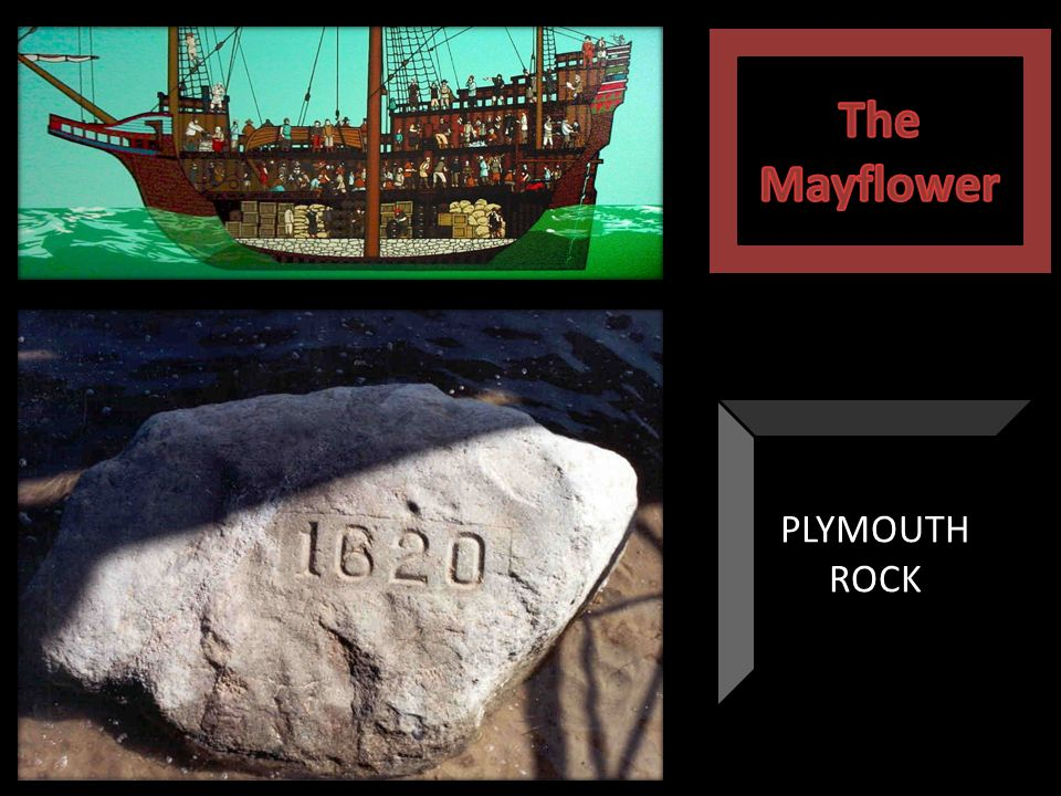 The Mayflower PLYMOUTH ROCK