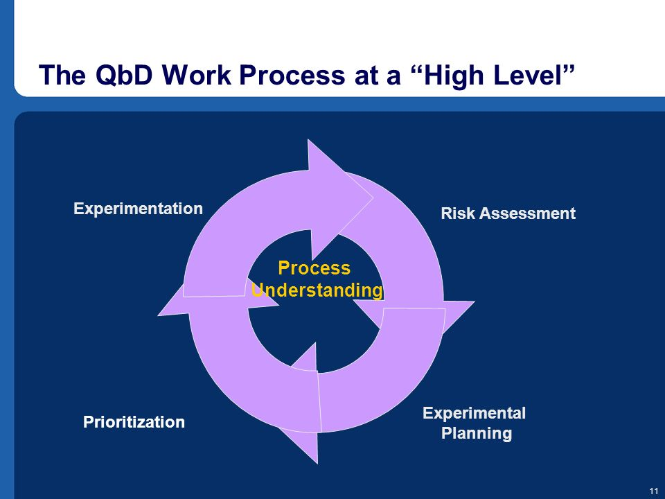 The QbD Work Process at a High Level