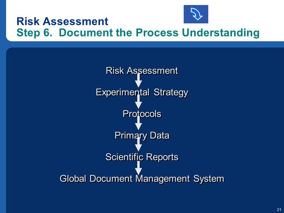 Risk Assessment Step 6. Document the Process Understanding