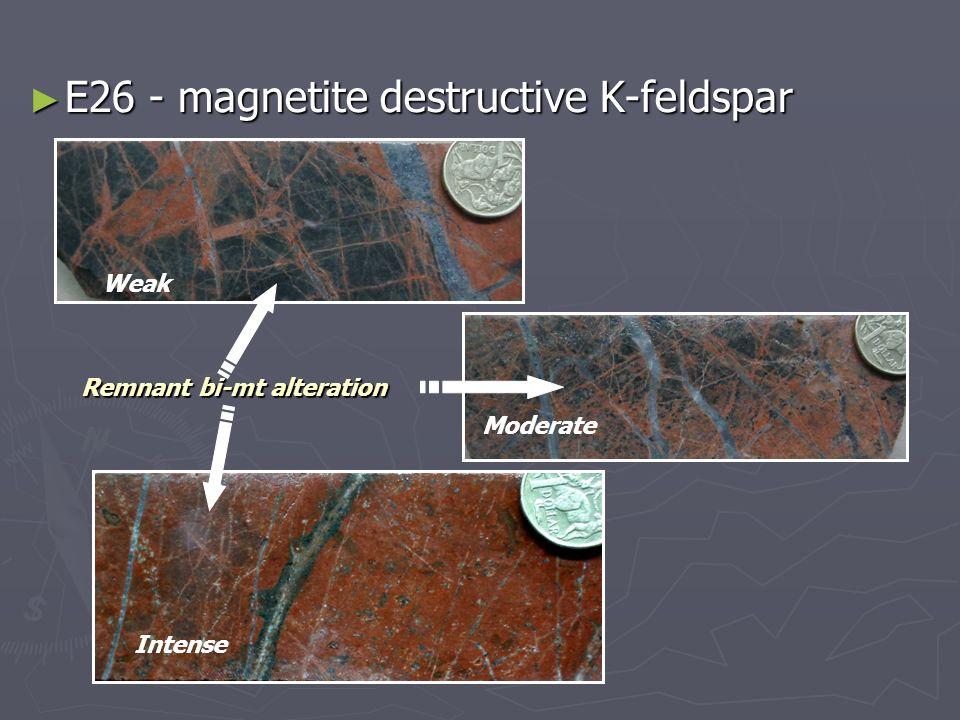 E26 - magnetite destructive K-feldspar