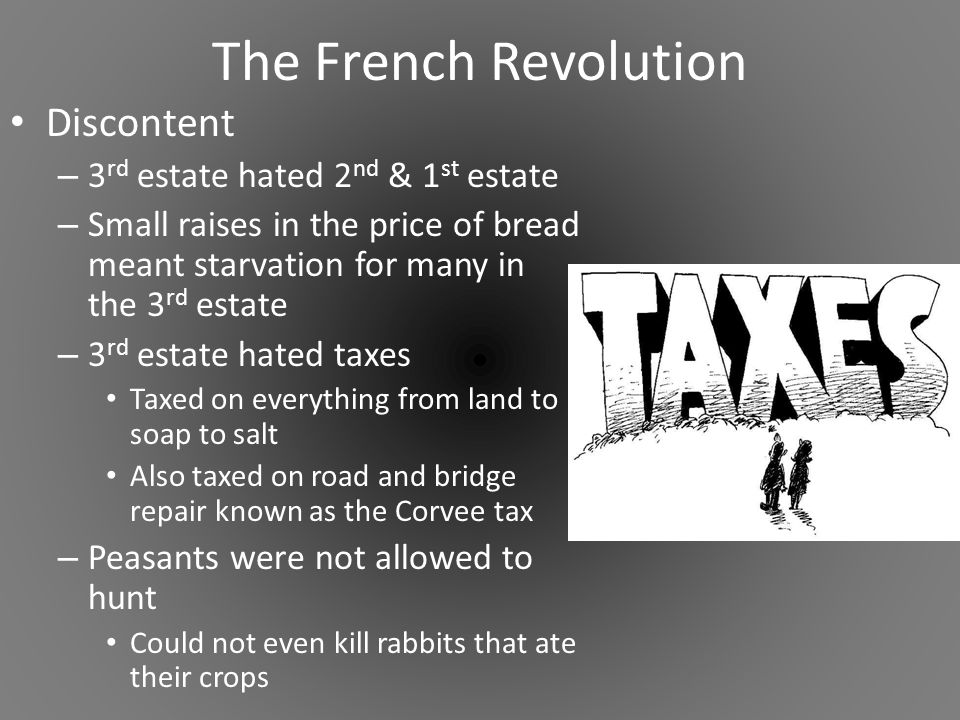 french revolution 3rd estate essay Eyewitness account of the early days of the french revolution  the third  estate soon declared itself a national assembly that was representative of the.