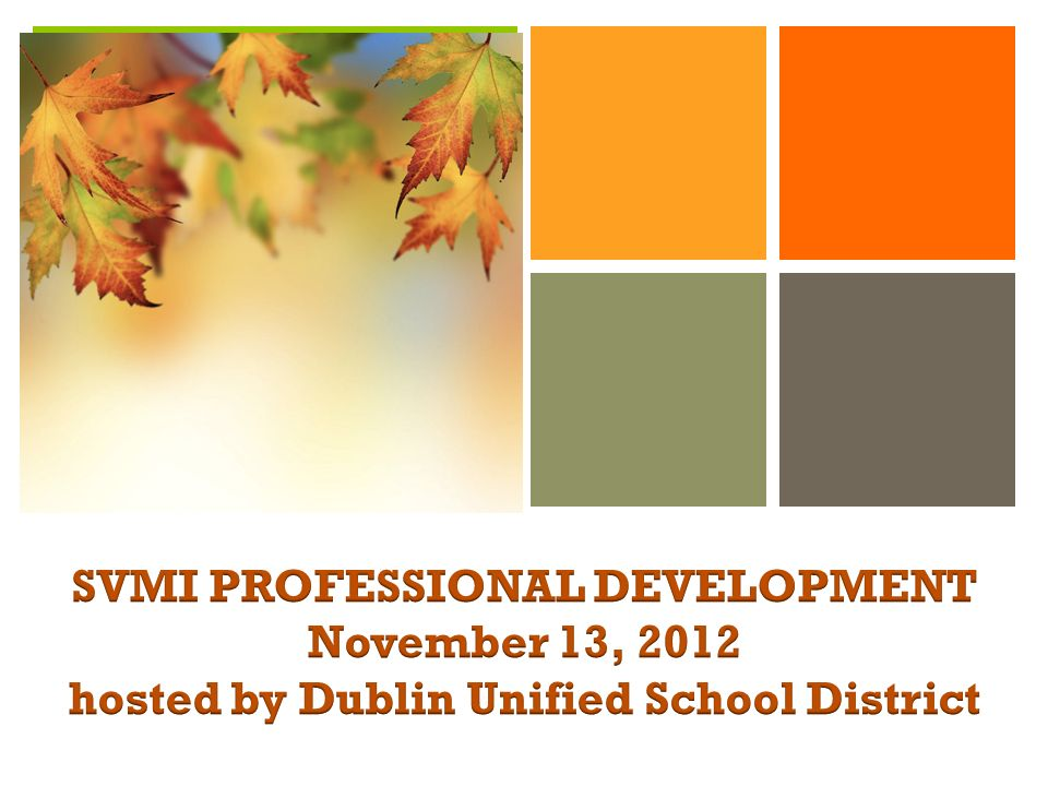 SVMI PROFESSIONAL DEVELOPMENT November 13, 2012 hosted by Dublin Unified School District