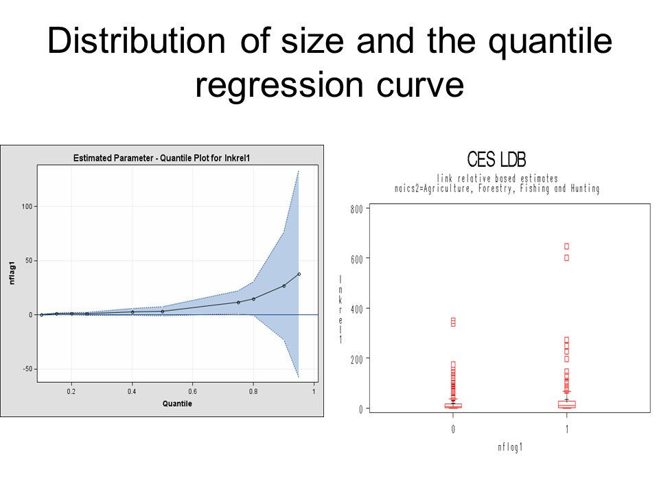 Distribution of size and the quantile regression curve
