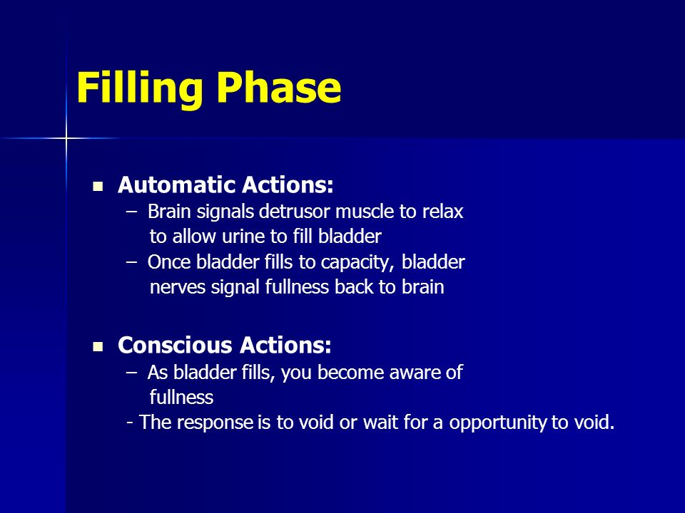 Filling Phase Automatic Actions: Conscious Actions: