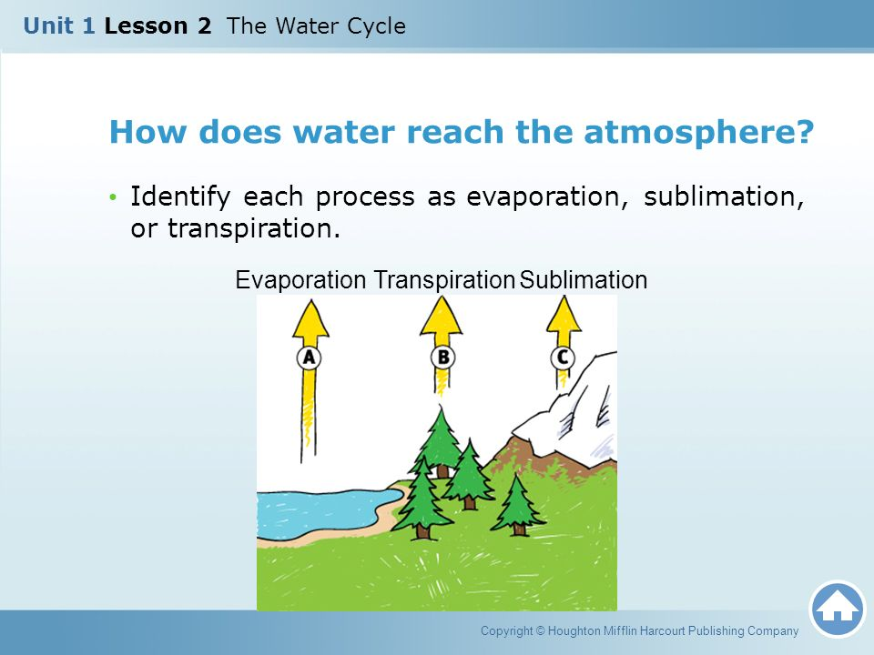 How does water reach the atmosphere
