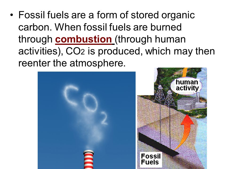 Fossil fuels are a form of stored organic carbon