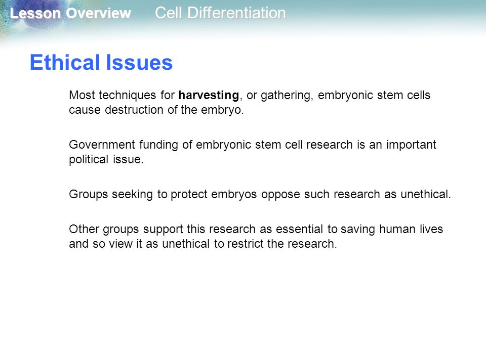 """letter of opposition for embryo harvesting On embryonic stem cell research a statement of the united states conference of catholic bishops  harvesting these """"embryonic stem cells"""" involves the deliberate killing of innocent human."""
