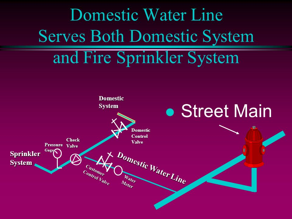 Domestic Water Line Serves Both Domestic System and Fire Sprinkler System