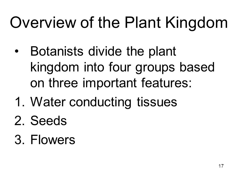 Overview of the Plant Kingdom