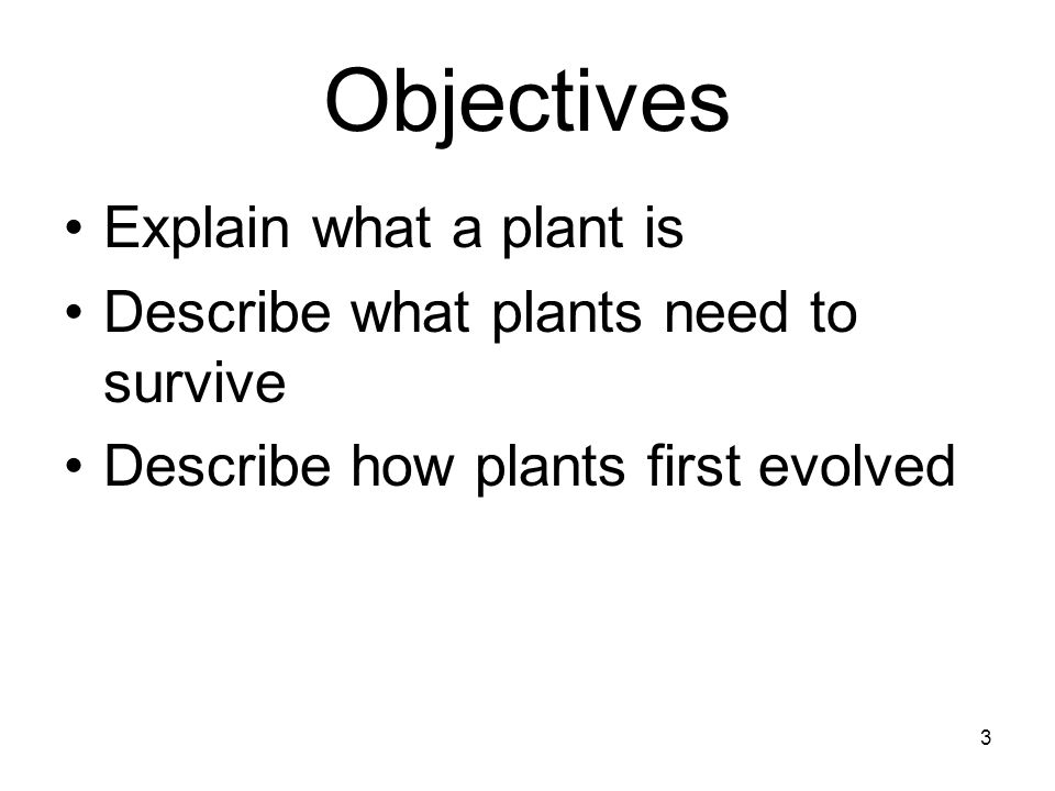 Objectives Explain what a plant is