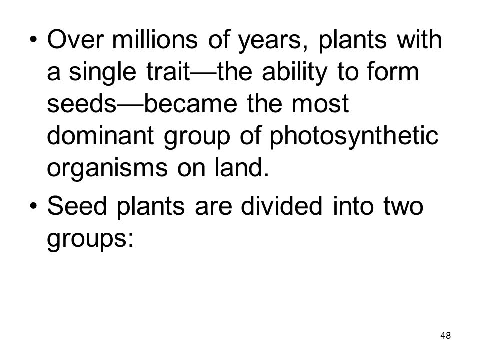 Over millions of years, plants with a single trait—the ability to form seeds—became the most dominant group of photosynthetic organisms on land.