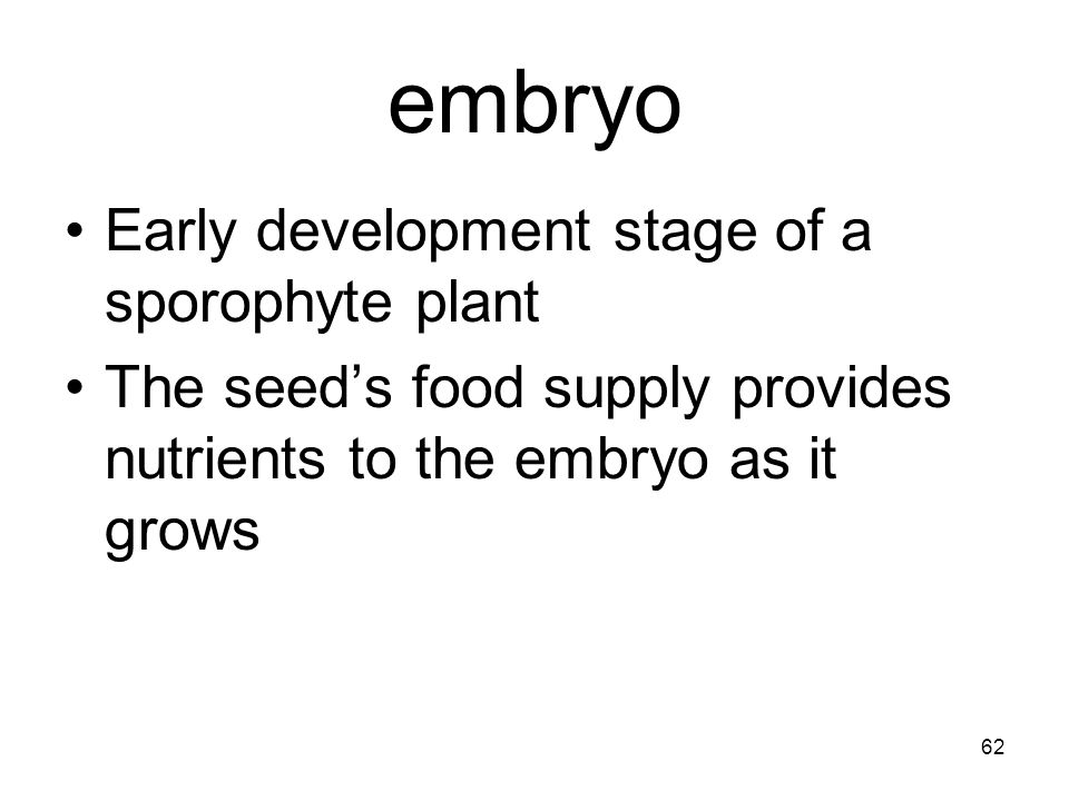 embryo Early development stage of a sporophyte plant