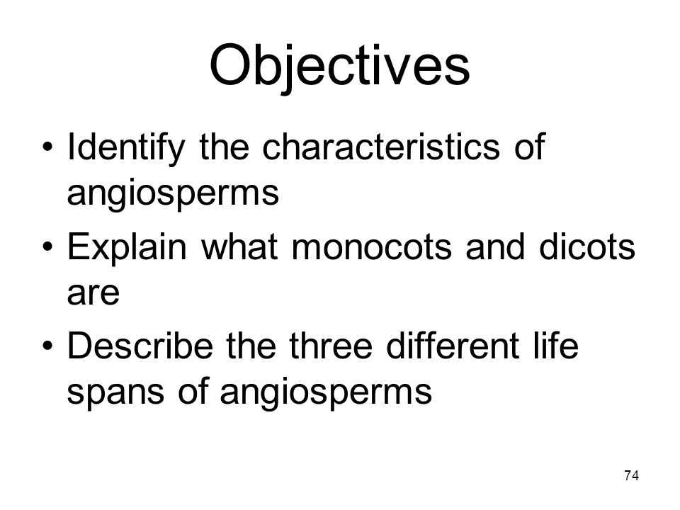 Objectives Identify the characteristics of angiosperms