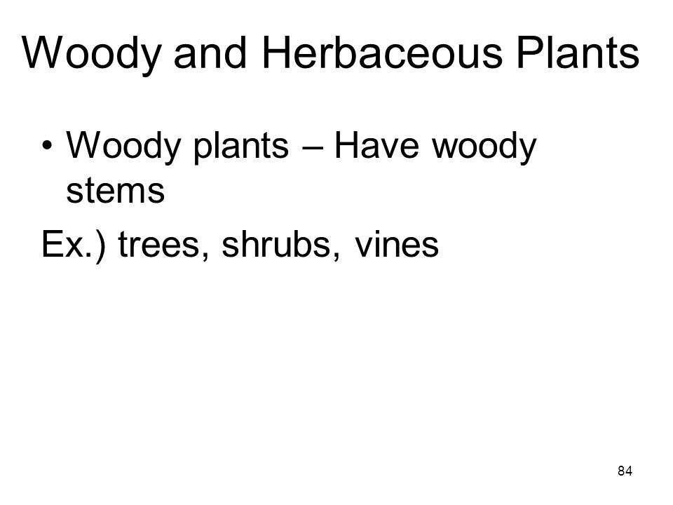 Woody and Herbaceous Plants