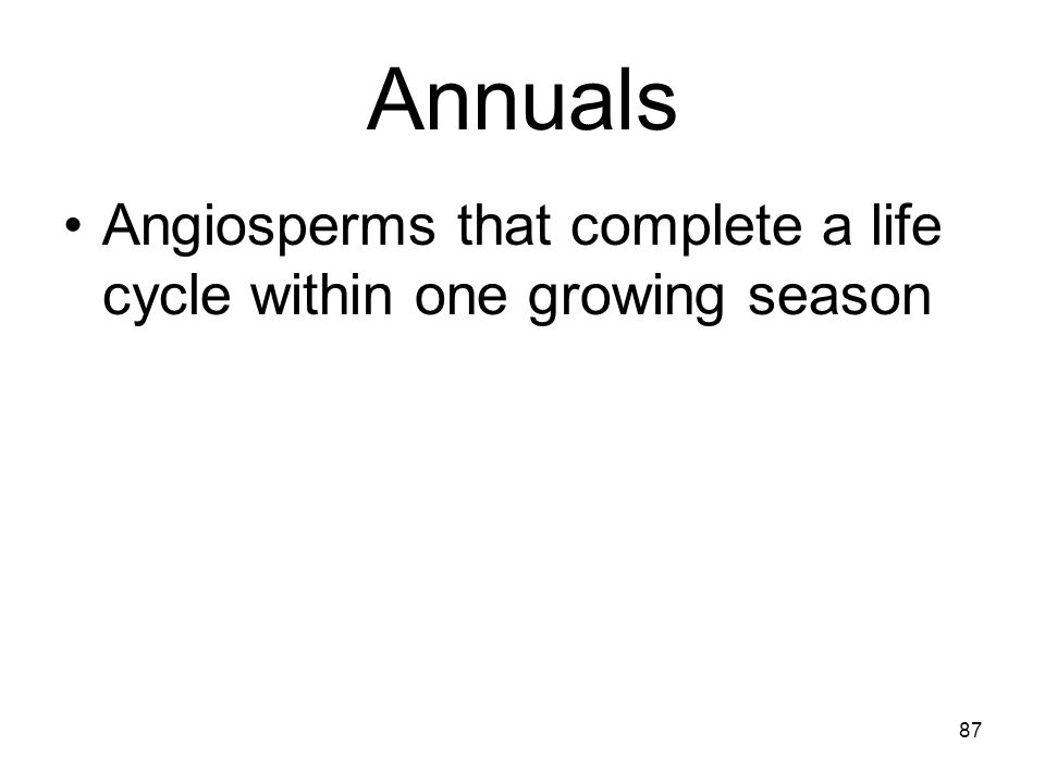 Annuals Angiosperms that complete a life cycle within one growing season