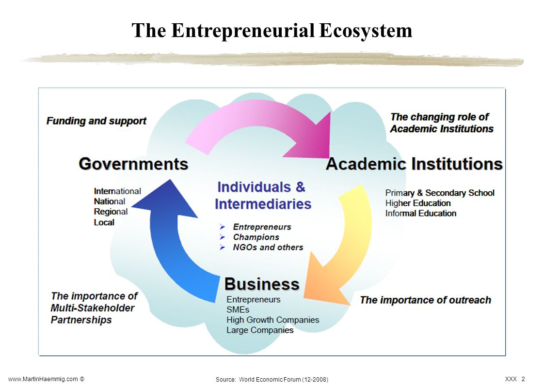 The Entrepreneurial Ecosystem