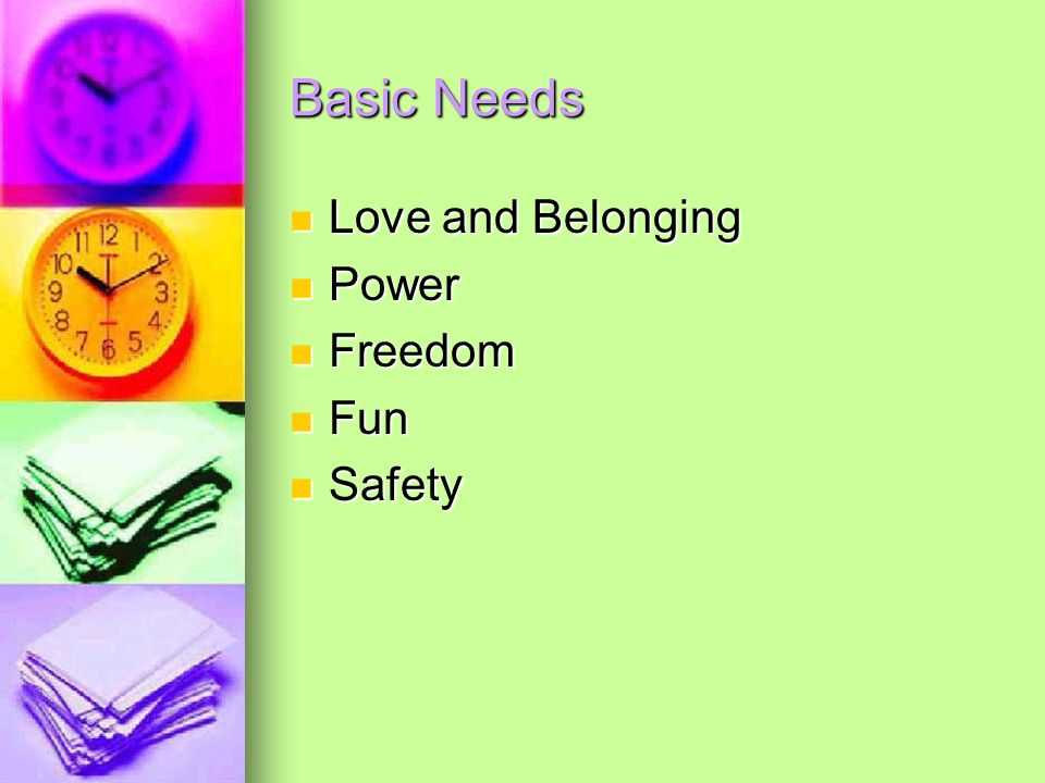 Basic Needs Love and Belonging Power Freedom Fun Safety