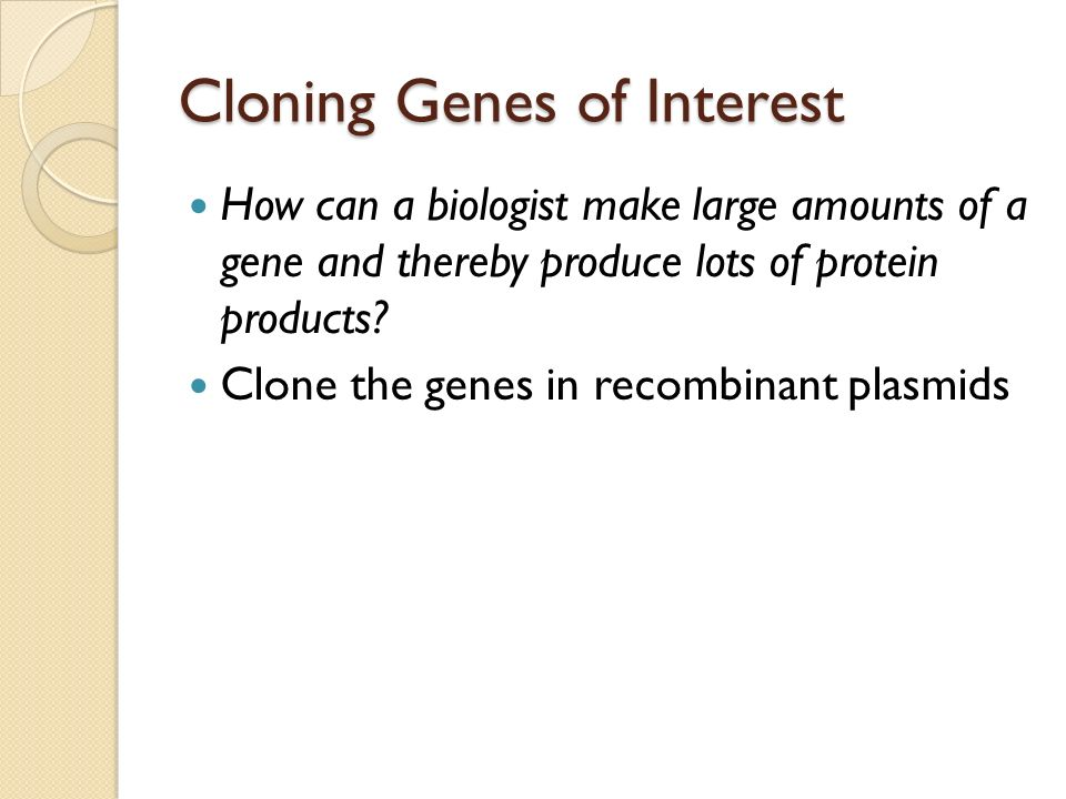 Cloning Genes of Interest