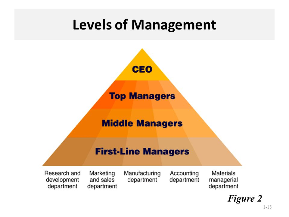 Levels of Management Figure 2