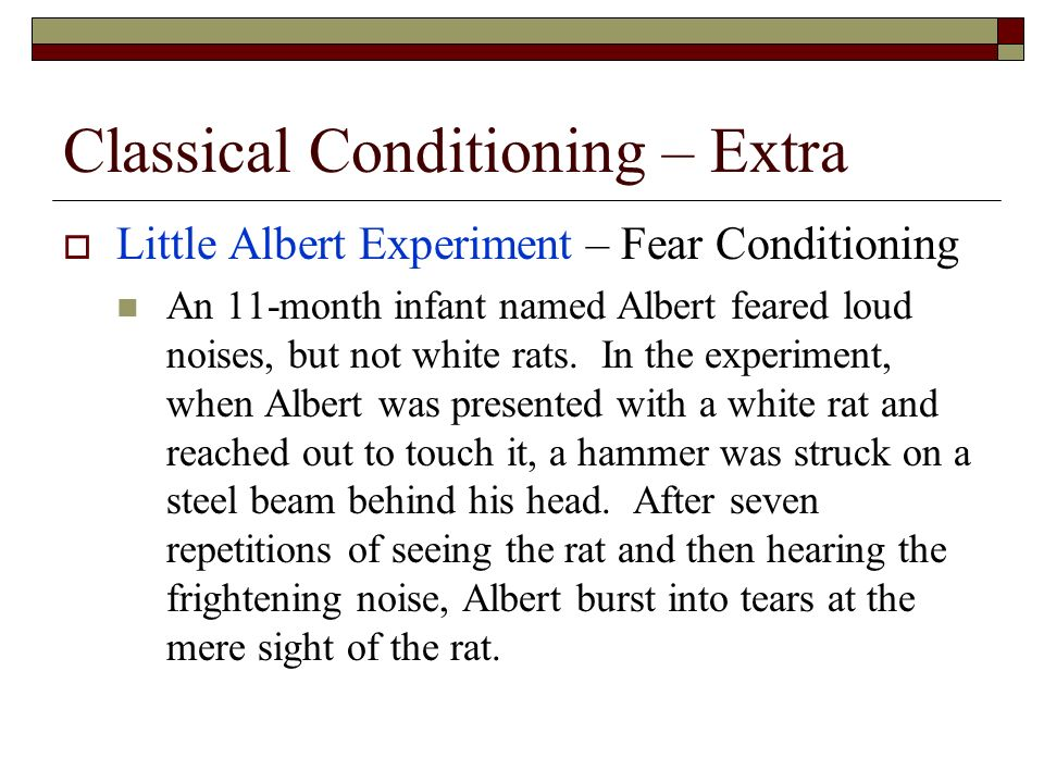 little albert classical conditioning The little albert experiment demonstrated that classical conditioning—the association of a particular stimulus or behavior with an unrelated stimulus or behavior—works in human beings in the.