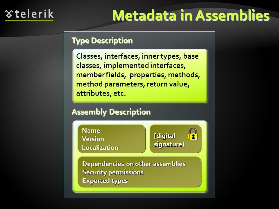 Metadata in Assemblies