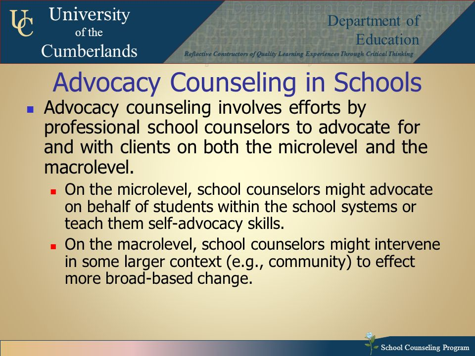 Advocacy for Counseling and Counselors: A Professional Imperative