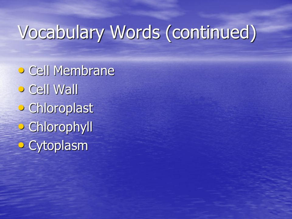 Vocabulary Words (continued)
