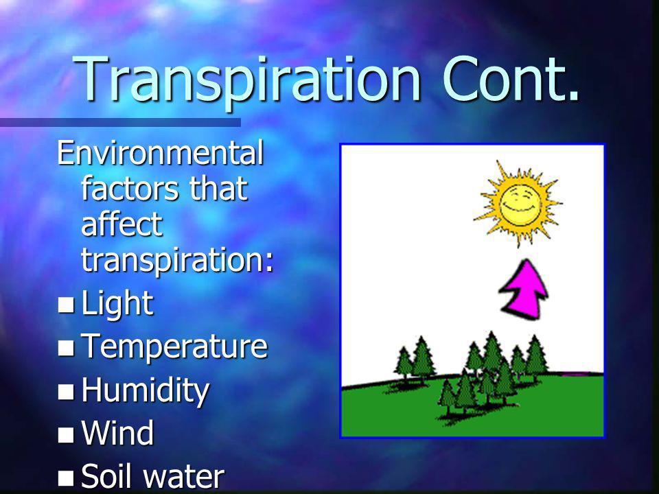 Transpiration Cont. Environmental factors that affect transpiration: