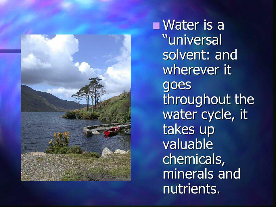 Water is a universal solvent: and wherever it goes throughout the water cycle, it takes up valuable chemicals, minerals and nutrients.