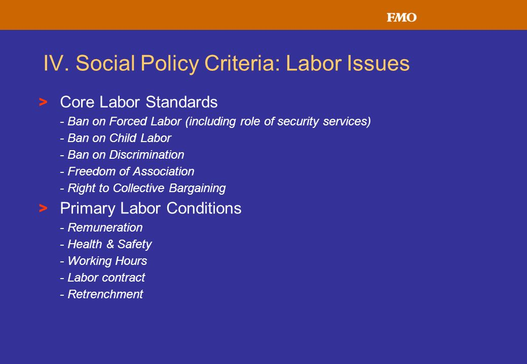 IV. Social Policy Criteria: Labor Issues