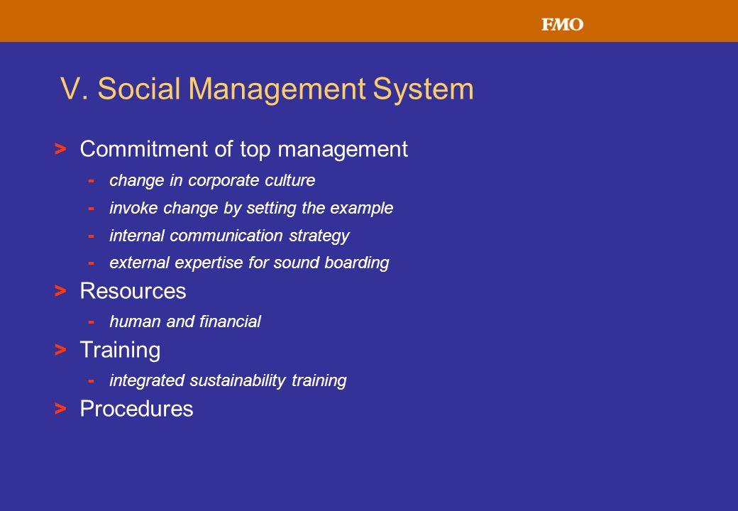V. Social Management System