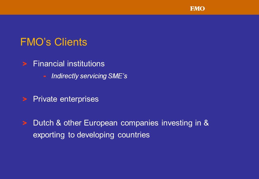 FMO's Clients Financial institutions Private enterprises