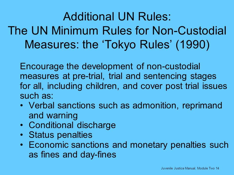Additional UN Rules: The UN Minimum Rules for Non-Custodial Measures: the 'Tokyo Rules' (1990)