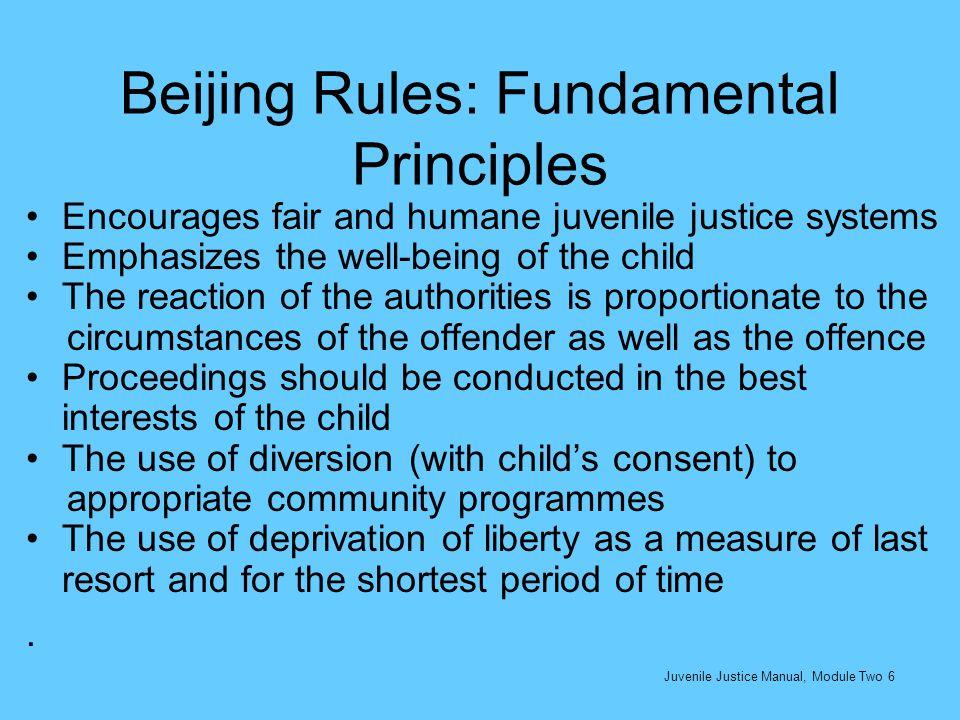 Beijing Rules: Fundamental Principles