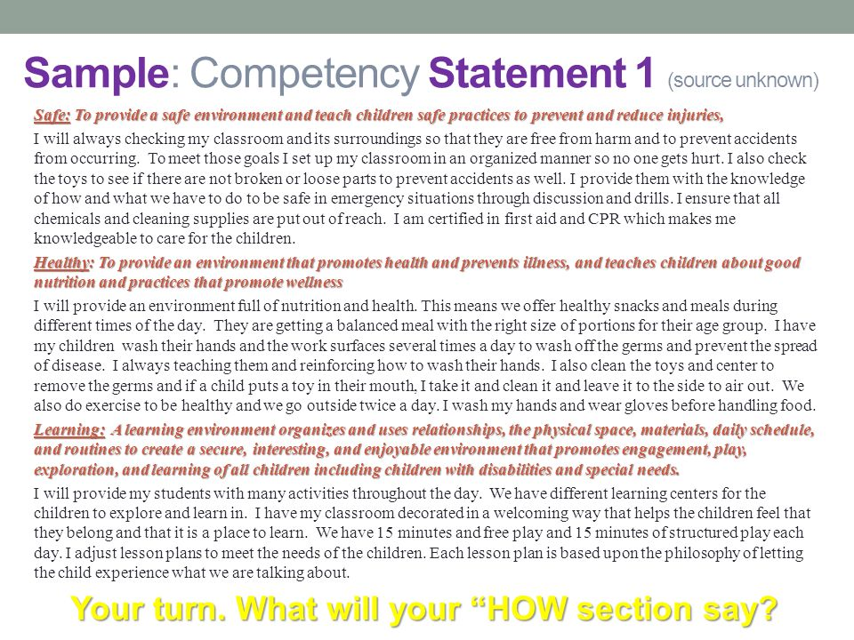 Competency Statement VI Professionalism Essay Sample