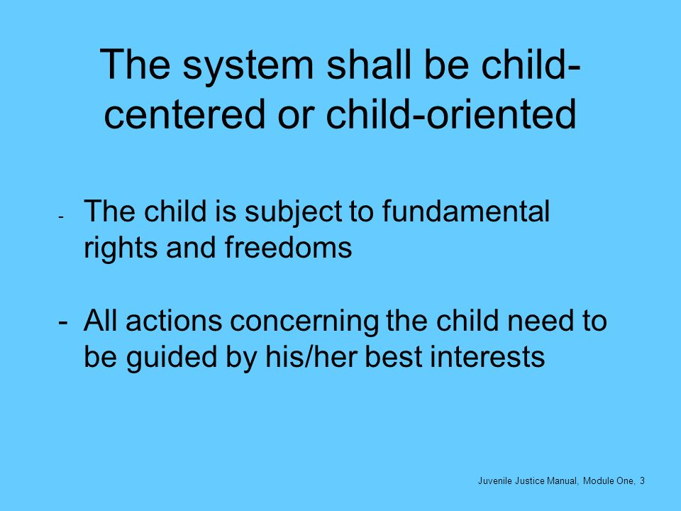 The system shall be child- centered or child-oriented