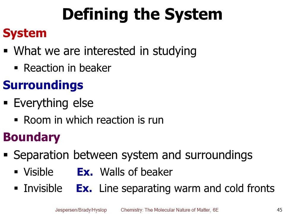 Defining the System System What we are interested in studying