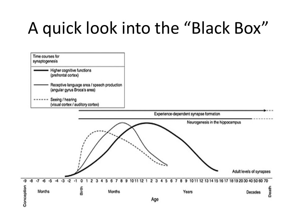 A quick look into the Black Box