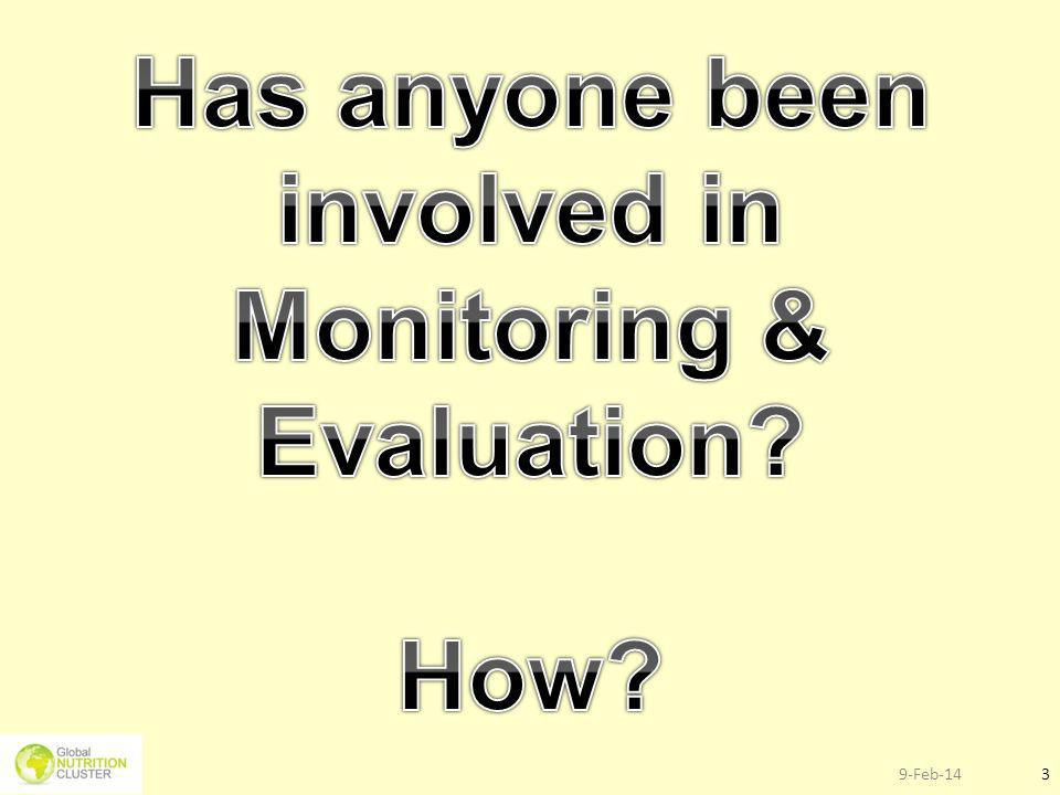 Has anyone been involved in Monitoring & Evaluation