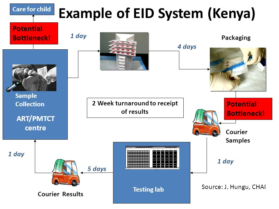 Example of EID System (Kenya)