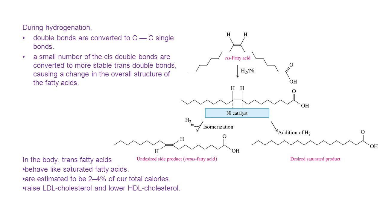 Lipids molecular structure and behavior ppt video online download 13 during hydrogenation pooptronica