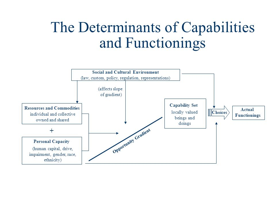 The Determinants of Capabilities and Functionings