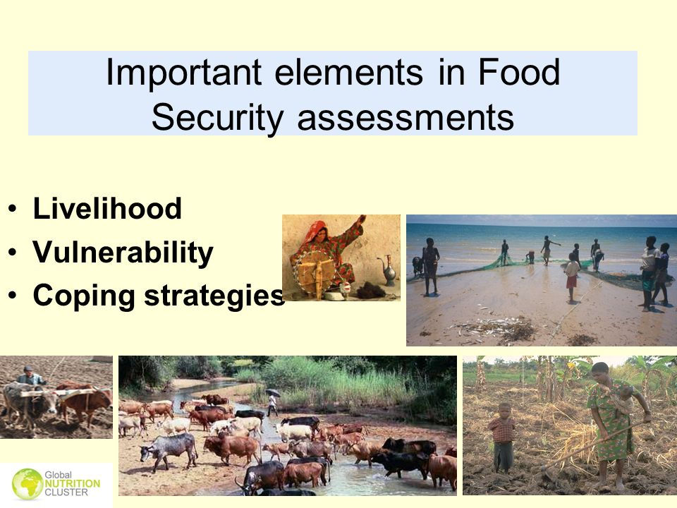 Important elements in Food Security assessments