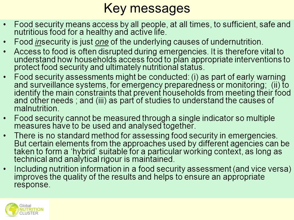 Key messages Food security means access by all people, at all times, to sufficient, safe and nutritious food for a healthy and active life.