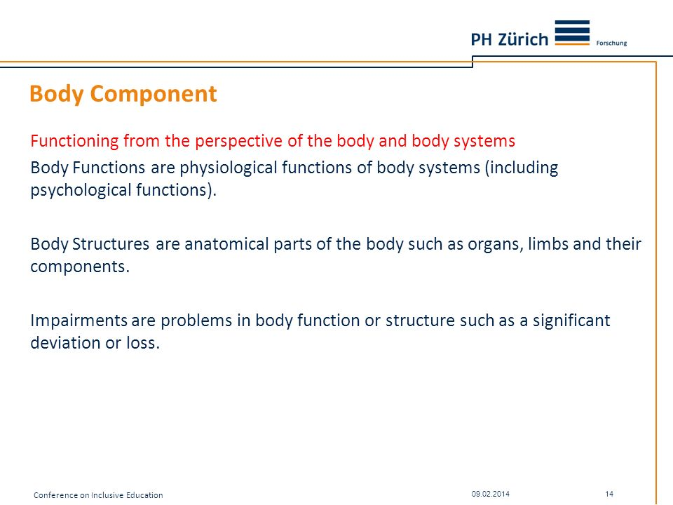 Body Component