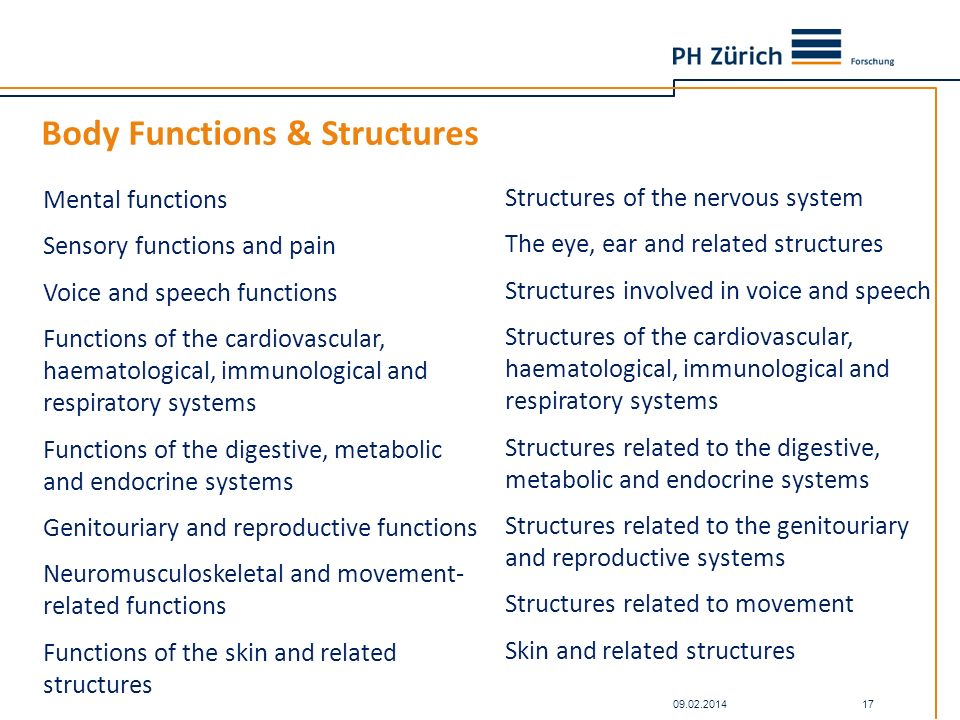 Body Functions & Structures