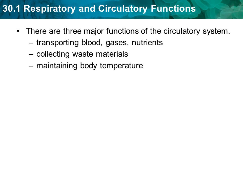 There are three major functions of the circulatory system.