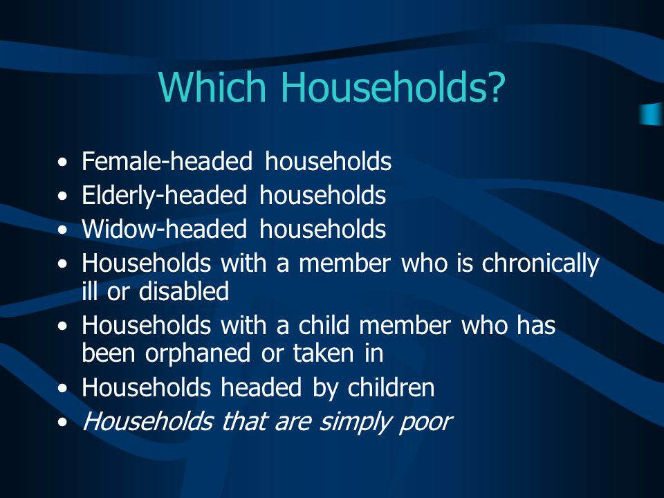 Which Households Female-headed households Elderly-headed households
