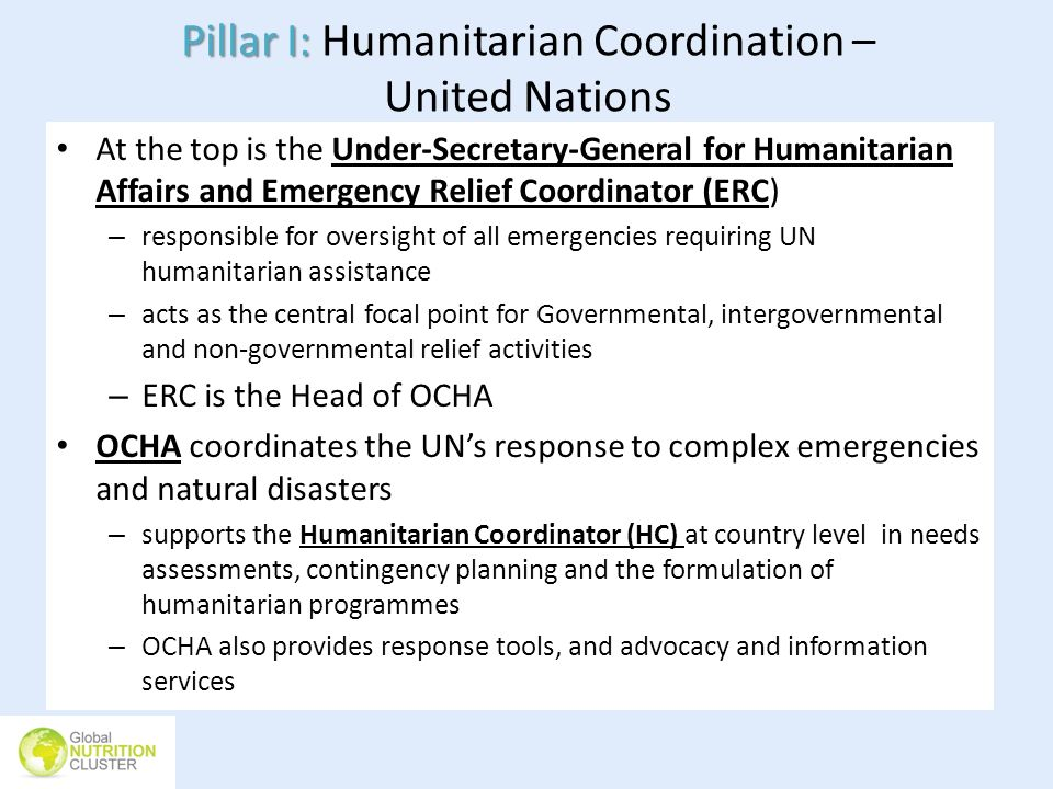 Pillar I: Humanitarian Coordination – United Nations