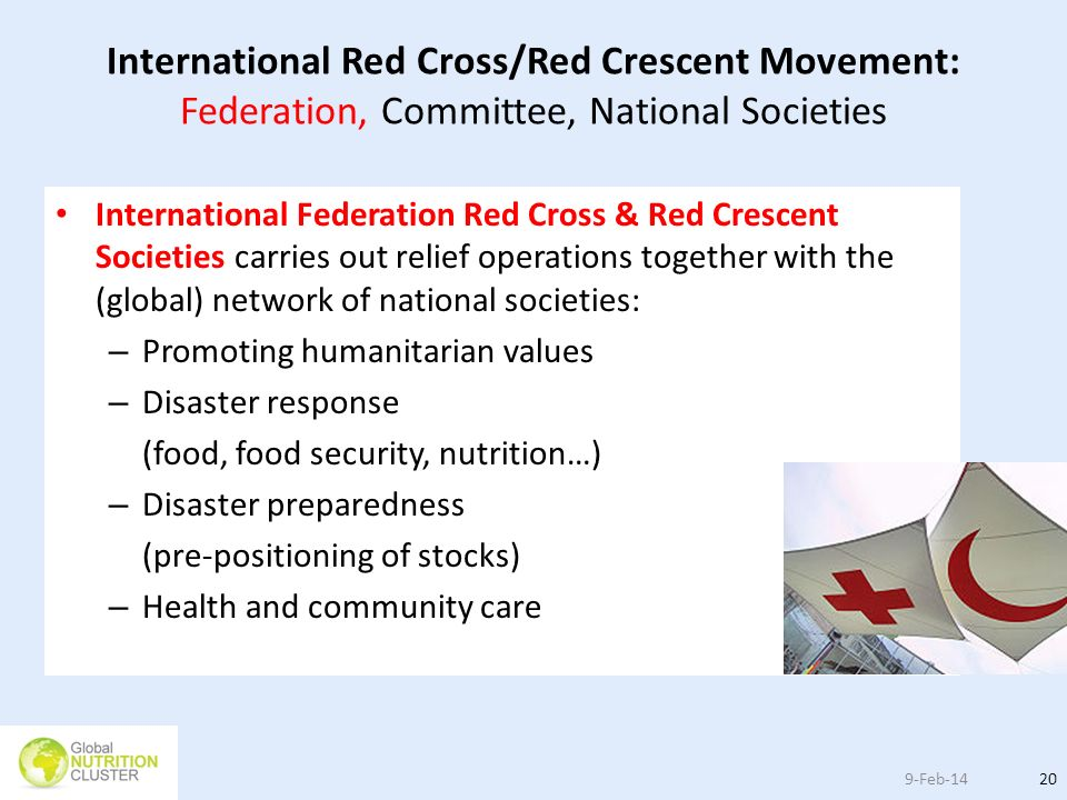 International Red Cross/Red Crescent Movement: Federation, Committee, National Societies